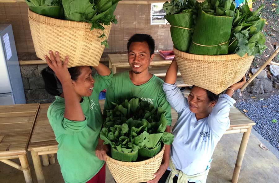Green School veggie basket