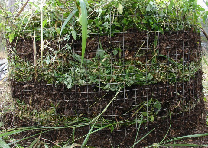 compost and growing food Bali