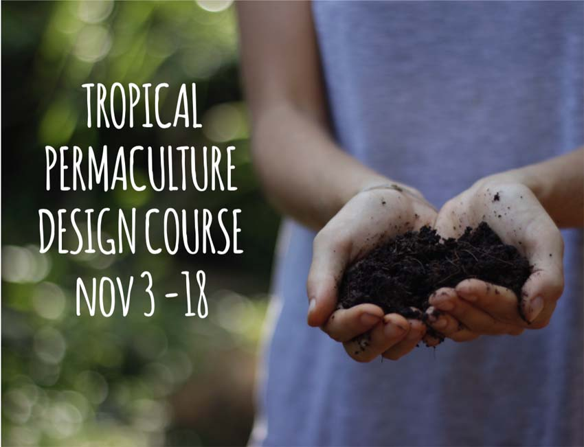 TROPICAL PERMACULTURE DESIGN COURSE