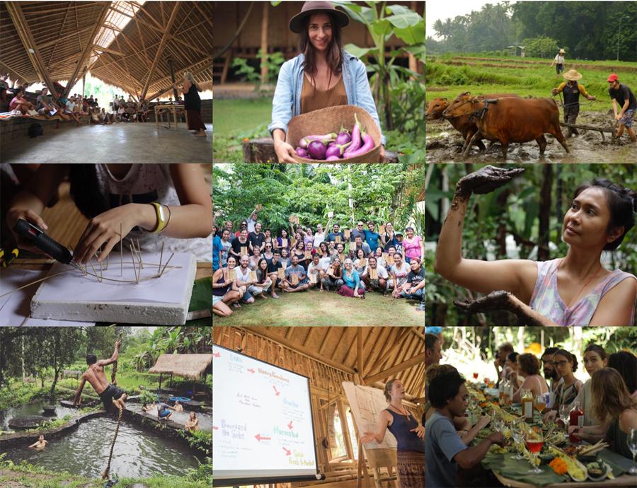 Permaculture Design Course Kul Kul Farm