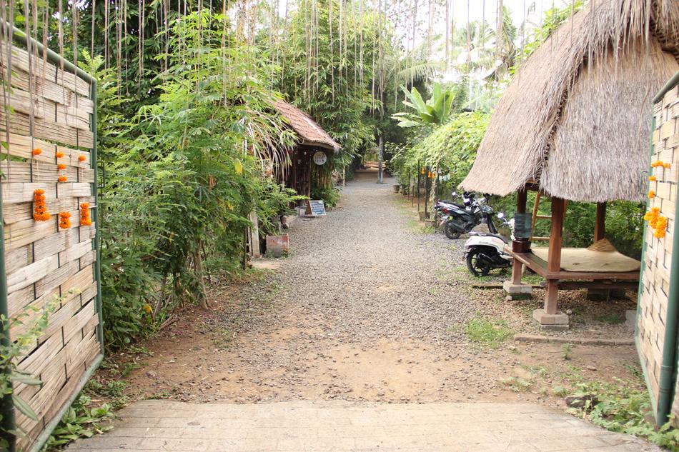 Farm Tour Bali