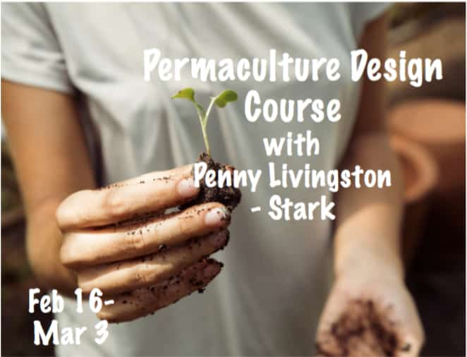 Permaculture Design Course with Penny Livingston-Stark