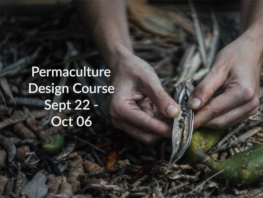 Permaculture Design Course with Chris Shanks