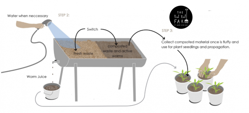 Start your own worm farm