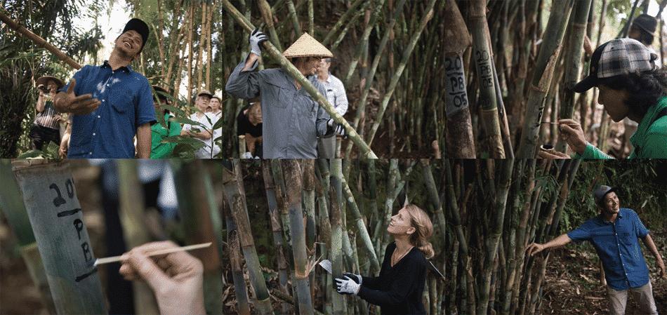 bamboo building bali 5