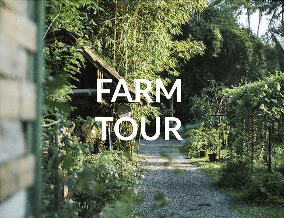 Permaculture Farm Tour